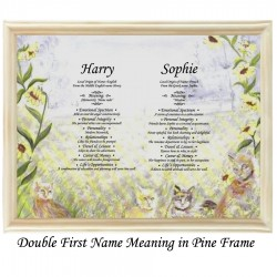 Double First Name Meaning with Cats and Flowers background