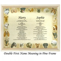Double First Name Meaning with Dogs Border background