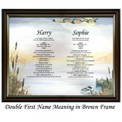 Double First Name Meaning with Geese background