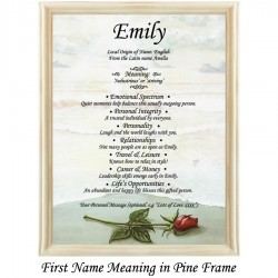 First Name Meaning with Rose on Beach background