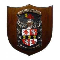 """Coat of Arms & Crest Large Shield (12"""" x 10"""")"""