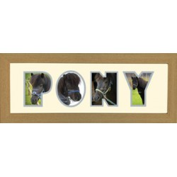 Pony Photos in a word Framed